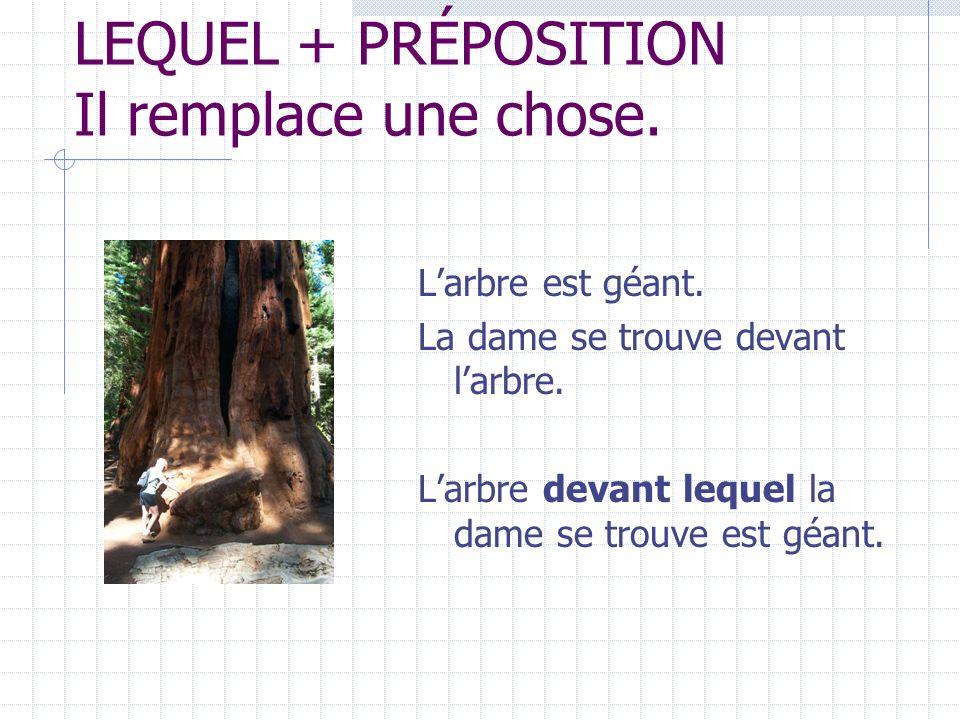 DONT: remplace une expression + de, de la, de l, du, des.