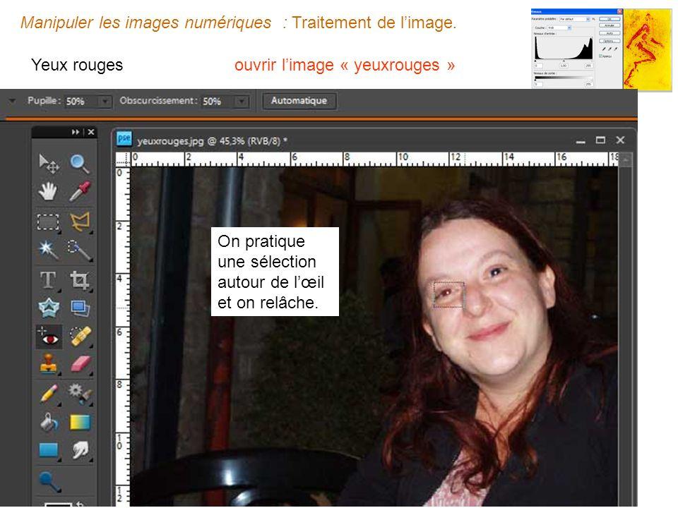 Manipuler les images numériques : Traitement de limage.