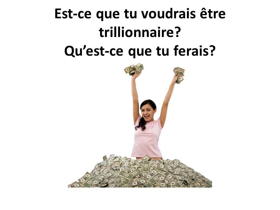 Est-ce que tu voudrais être trillionnaire? Quest-ce que tu ferais?