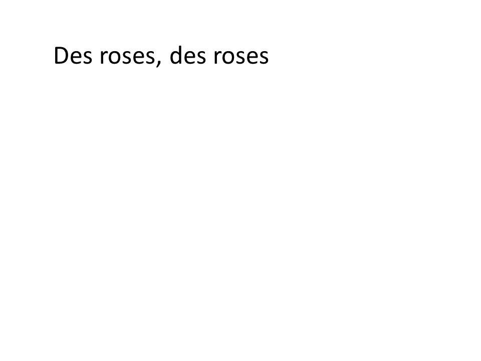 Des roses, des roses