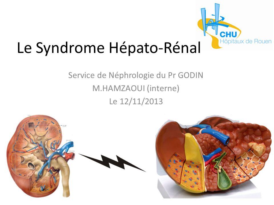 Le Syndrome Hépato-Rénal Service de Néphrologie du Pr GODIN M.HAMZAOUI (interne) Le 12/11/2013
