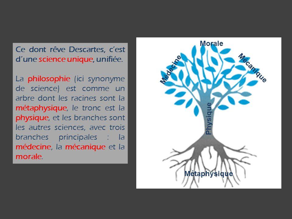 Ce dont rêve Descartes, cest dune science unique, unifiée. La philosophie (ici synonyme de science) est comme un arbre dont les racines sont la métaph