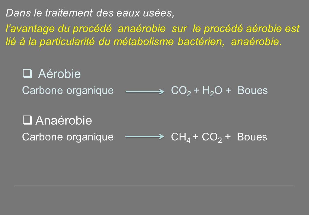Dans le traitement des eaux usées, lavantage du procédé anaérobie sur le procédé aérobie est lié à la particularité du métabolisme bactérien, anaérobie.