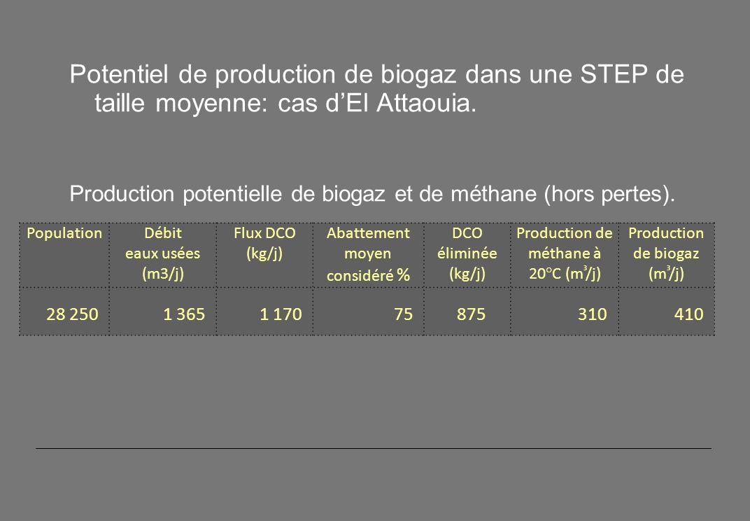 Potentiel de production de biogaz dans une STEP de taille moyenne: cas dEl Attaouia.