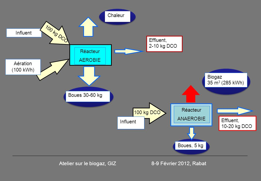 Réacteur AEROBIE Chaleur Boues 30-60 kg Effluent, 2-10 kg DCO Aération (100 kWh) Réacteur ANAEROBIE Biogaz 35 m 3 (285 kWh) Boues, 5 kg Effluent, 10-20 kg DCO Influent 100 kg DCO Influent Atelier sur le biogaz, GIZ 8-9 Février 2012, Rabat 100 kg DCO