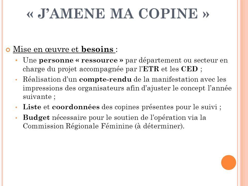 « JAMENE MA COPINE » Mise en œuvre et besoins : Une personne « ressource » par département ou secteur en charge du projet accompagnée par l ETR et les