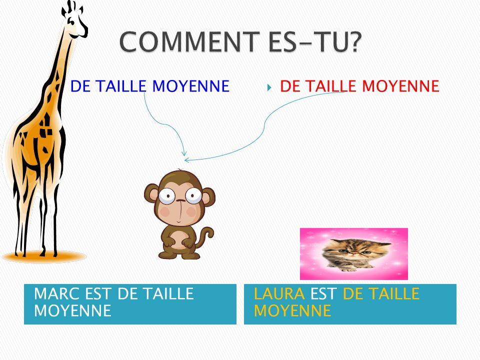 MARC EST DE TAILLE MOYENNE LAURA EST DE TAILLE MOYENNE DE TAILLE MOYENNE