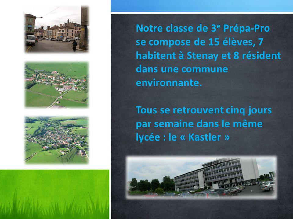 Notre classe de 3 e Prépa-Pro se compose de 15 élèves, 7 habitent à Stenay et 8 résident dans une commune environnante. Tous se retrouvent cinq jours
