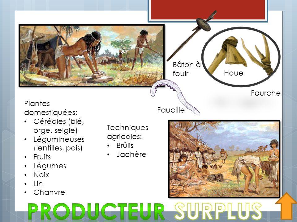 Houe Fourche Faucille Plantes domestiquées: Céréales (blé, orge, seigle) Légumineuses (lentilles, pois) Fruits Légumes Noix Lin Chanvre Techniques agr