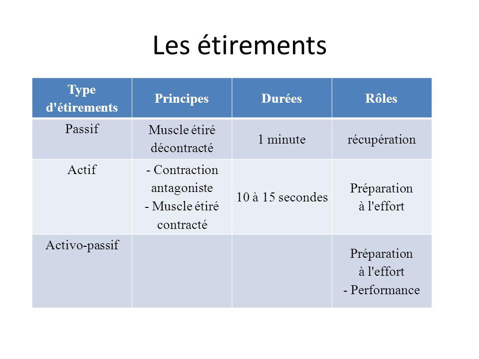 Les étirements Type d'étirements PrincipesDuréesRôles Passif Muscle étiré décontracté 1 minuterécupération Actif - Contraction antagoniste - Muscle ét