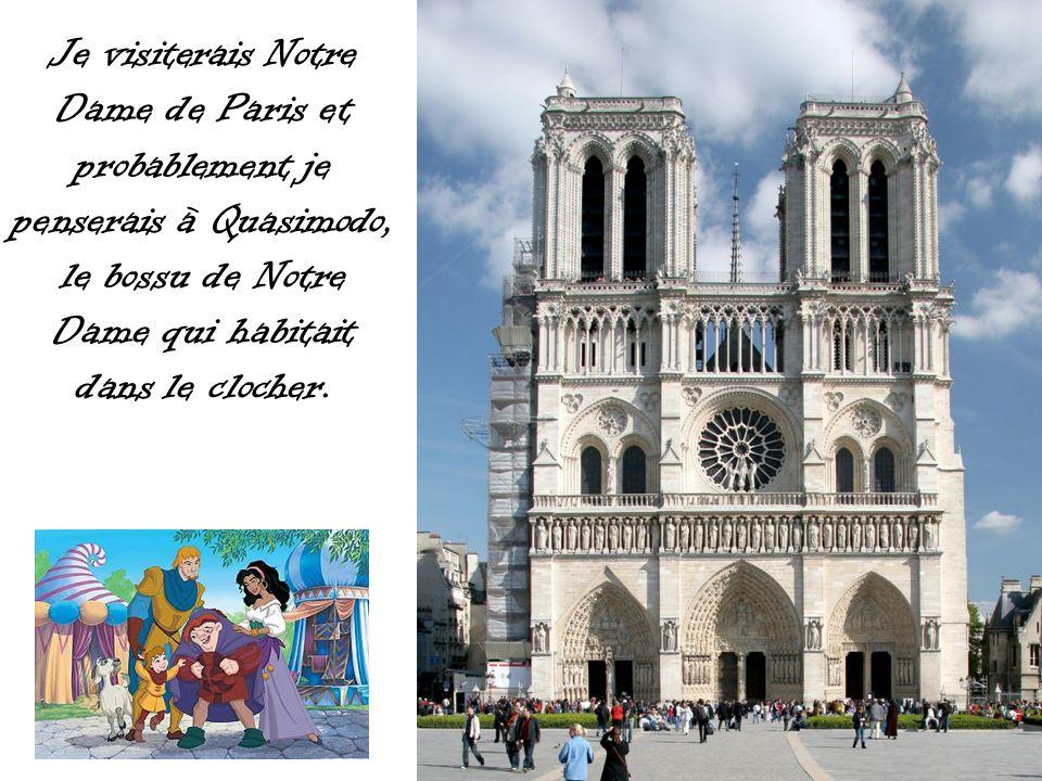 Je visiterais Notre Dame de Paris et probablement je penserais à Quasimodo, le bossu de Notre Dame qui habitait dans le clocher.