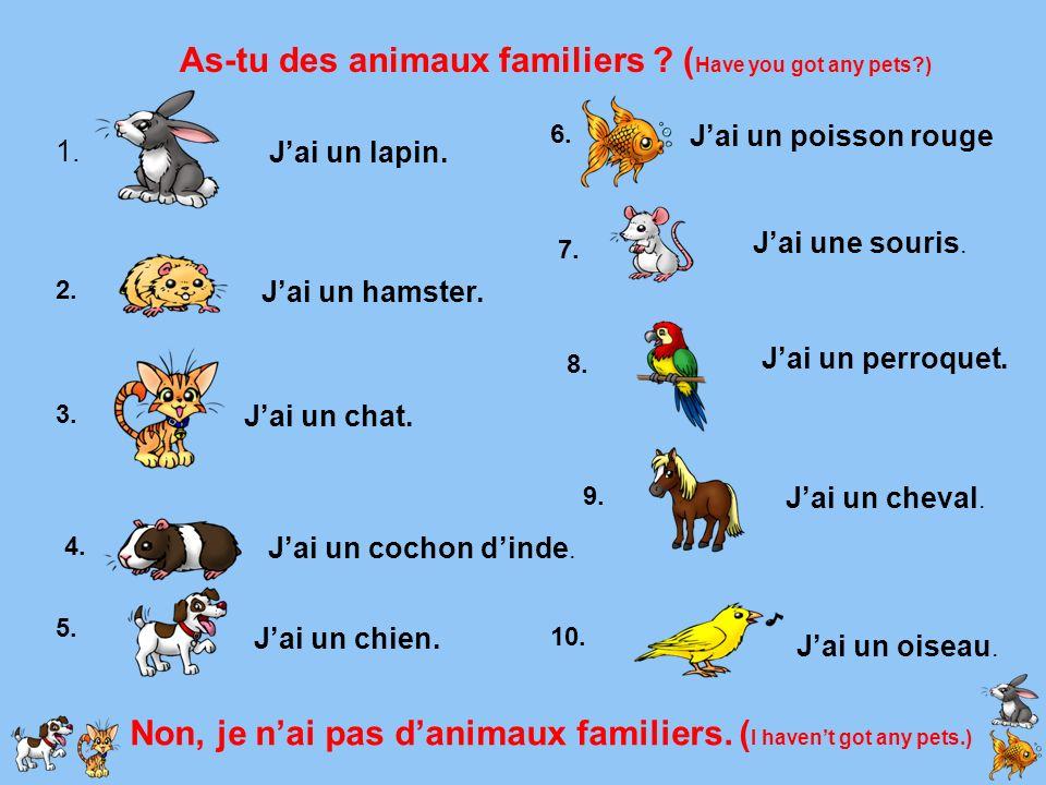 As-tu des animaux familiers ? ( Have you got any pets?) 1. 2. 3. 4. 5. 6. 7. 8. 9. 10. Jai un lapin. Jai un hamster. Jai un chat. Jai un cochon dinde.