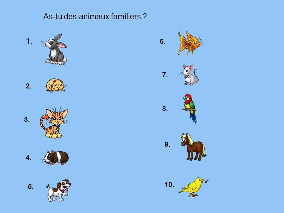 As-tu des animaux familiers ? 1. 2. 3. 4. 5. 6. 7. 8. 9. 10.