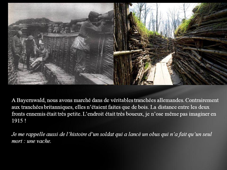 A Bayernwald, nous avons marché dans de véritables tranchées allemandes. Contrairement aux tranchées britanniques, elles nétaient faites que de bois.