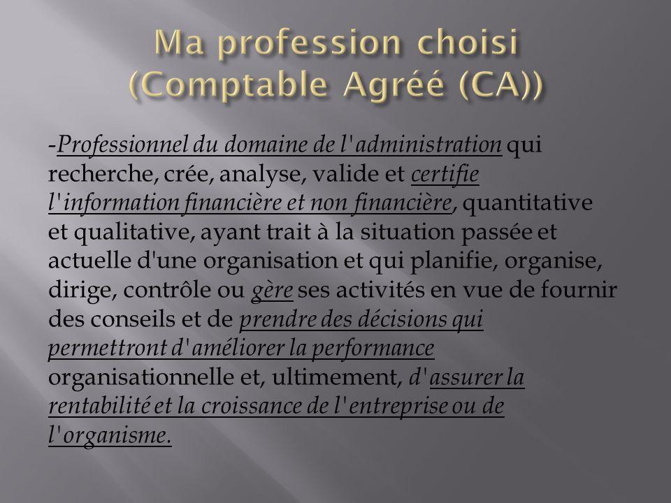 - Professionnel du domaine de l'administration qui recherche, crée, analyse, valide et certifie l'information financière et non financière, quantitati