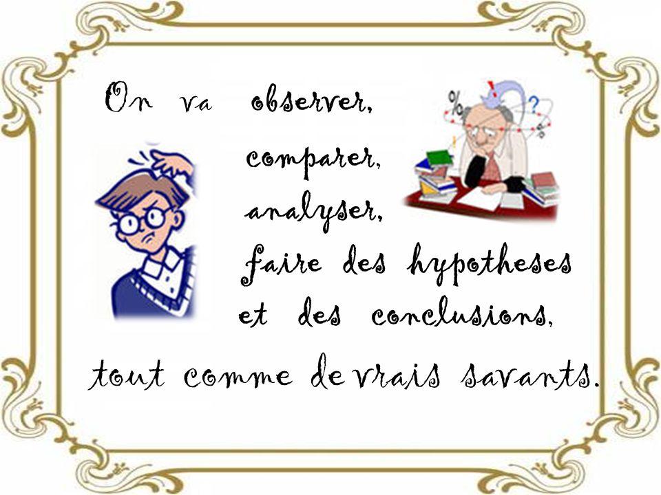 On va observer, comparer, analyser, faire des hypotheses et des conclusions, tout comme de vrais savants.