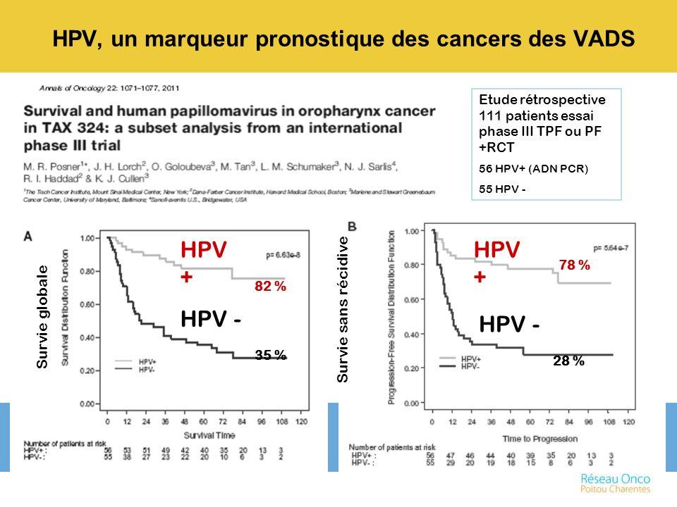Etude rétrospective 111 patients essai phase III TPF ou PF +RCT 56 HPV+ (ADN PCR) 55 HPV - HPV + Survie globale Survie sans récidive HPV - HPV + HPV -