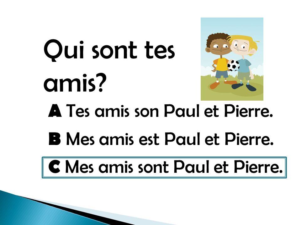 Qui sont tes amis. A Tes amis son Paul et Pierre.