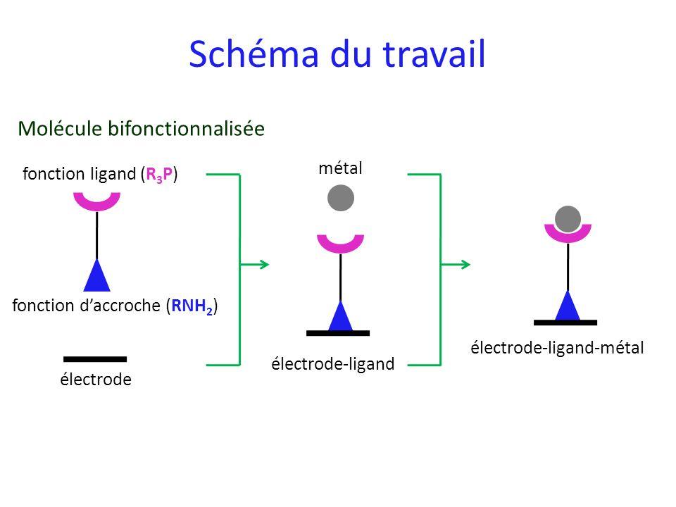 Schéma du travail fonction ligand (R 3 P) fonction daccroche (RNH 2 ) électrode électrode-ligand métal électrode-ligand-métal Molécule bifonctionnalis