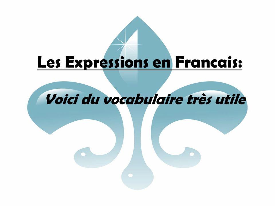 Les Expressions en Francais: Voici du vocabulaire très utile