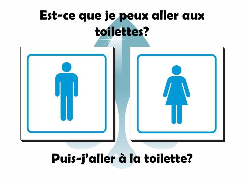 Est-ce que je peux aller aux toilettes? Puis-jaller à la toilette?
