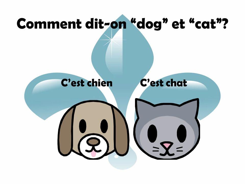 Comment dit-on dog et cat? Cest chien Cest chat