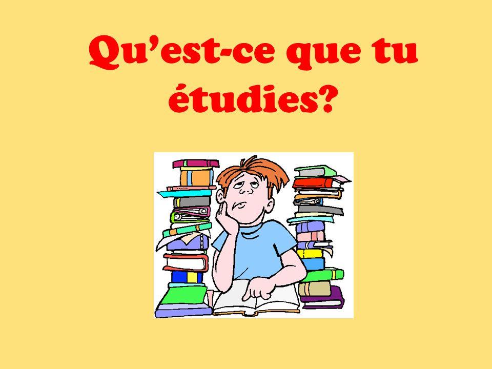 Quest-ce que tu étudies?