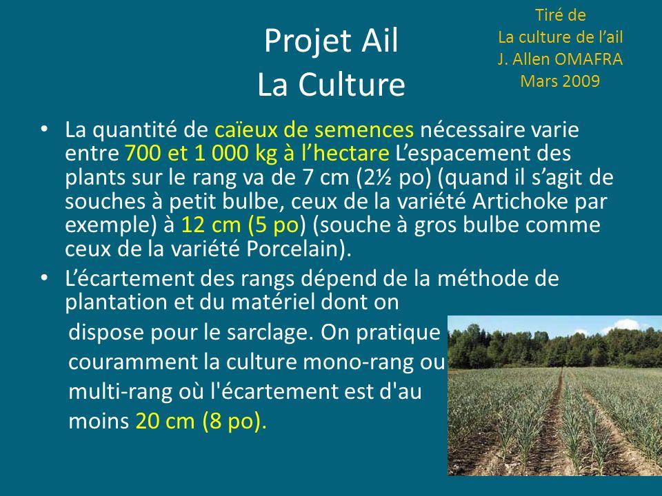 Projet Ail La Culture La quantité de caïeux de semences nécessaire varie entre 700 et 1 000 kg à lhectare Lespacement des plants sur le rang va de 7 c