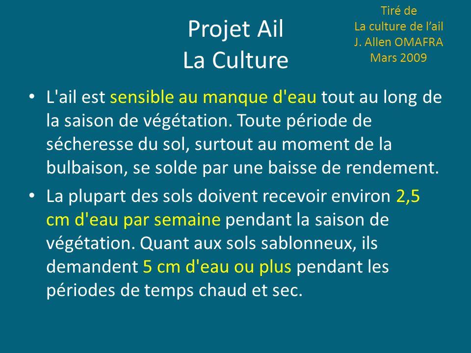Projet Ail La Culture L'ail est sensible au manque d'eau tout au long de la saison de végétation. Toute période de sécheresse du sol, surtout au momen