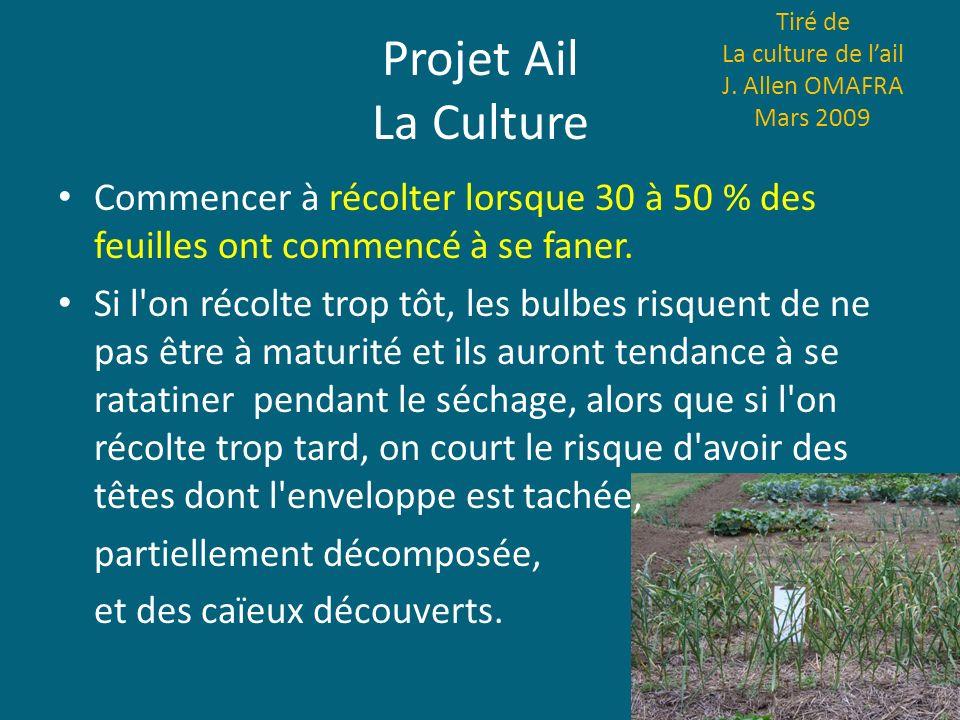 Projet Ail La Culture Tiré de La culture de lail J. Allen OMAFRA Mars 2009 Commencer à récolter lorsque 30 à 50 % des feuilles ont commencé à se faner
