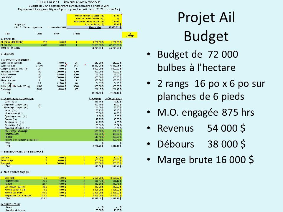 Projet Ail Budget Budget de 72 000 bulbes à lhectare 2 rangs 16 po x 6 po sur planches de 6 pieds M.O. engagée 875 hrs Revenus 54 000 $ Débours 38 000