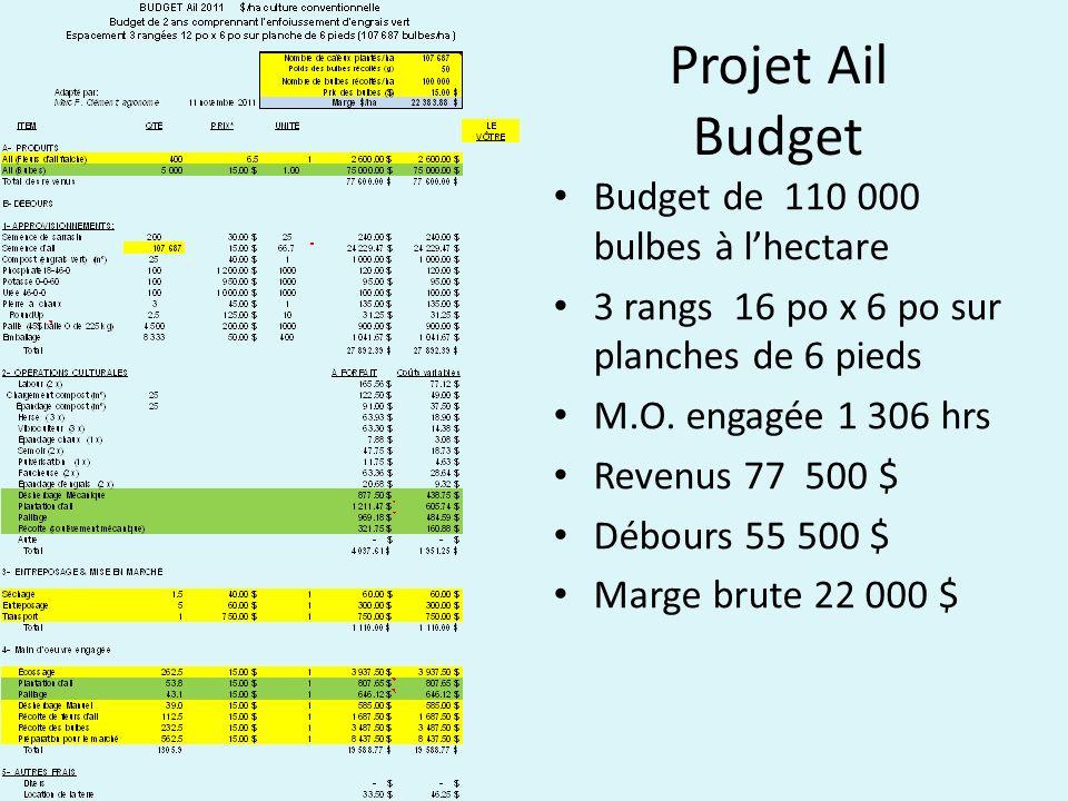 Projet Ail Budget Budget de 110 000 bulbes à lhectare 3 rangs 16 po x 6 po sur planches de 6 pieds M.O. engagée 1 306 hrs Revenus 77 500 $ Débours 55