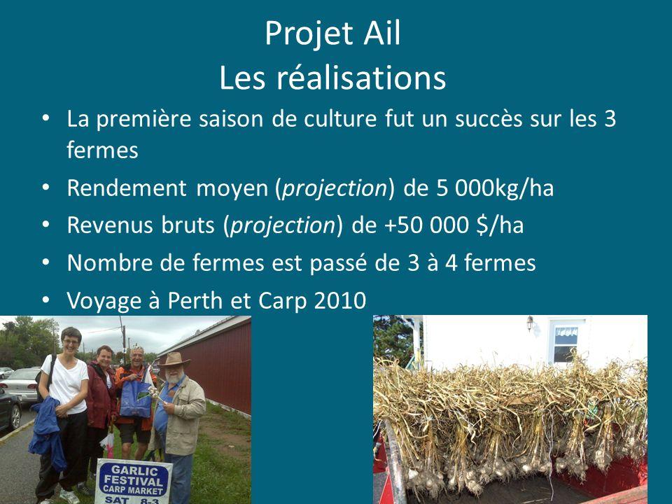Projet Ail Les réalisations La première saison de culture fut un succès sur les 3 fermes Rendement moyen (projection) de 5 000kg/ha Revenus bruts (pro