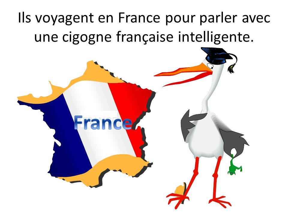 Ils voyagent en France pour parler avec une cigogne française intelligente.