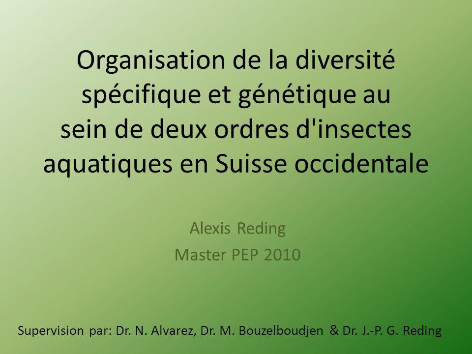Organisation de la diversité spécifique et génétique au sein de deux ordres d'insectes aquatiques en Suisse occidentale Alexis Reding Master PEP 2010