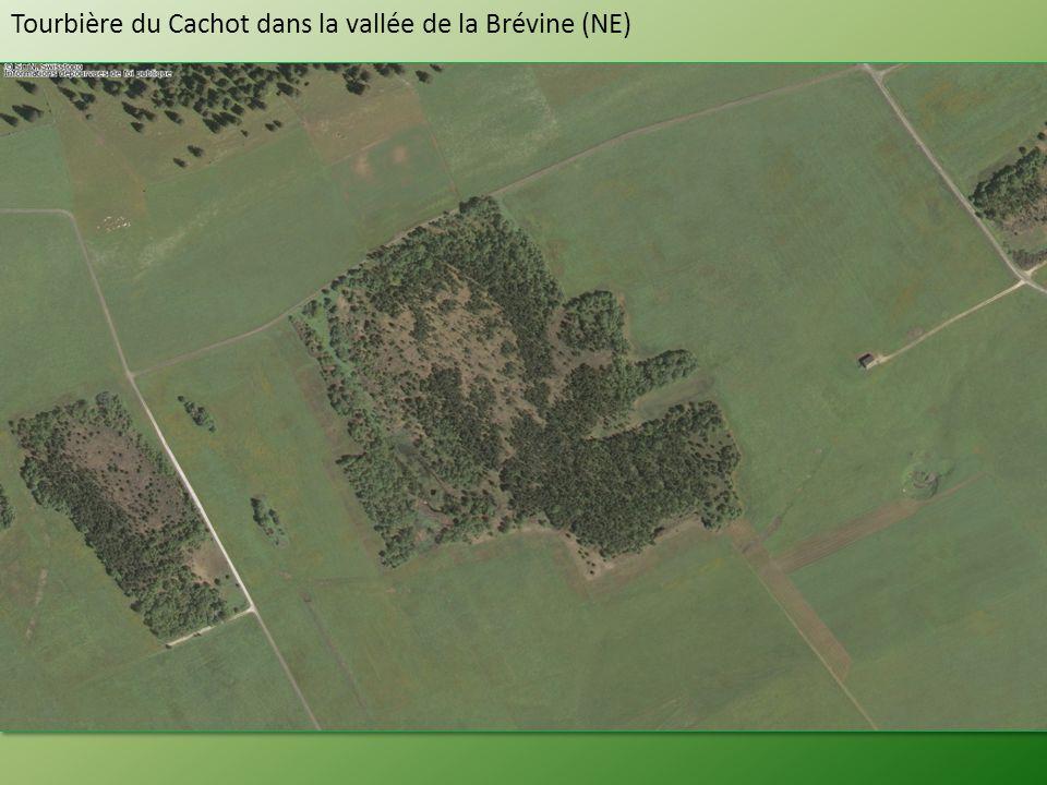 Tourbière du Cachot dans la vallée de la Brévine (NE)