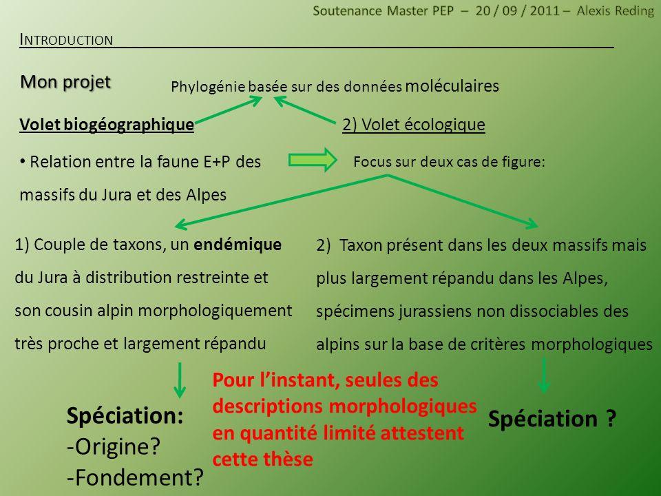 Volet biogéographique Relation entre la faune E+P des massifs du Jura et des Alpes I NTRODUCTION 2) Volet écologique Focus sur deux cas de figure: 2)