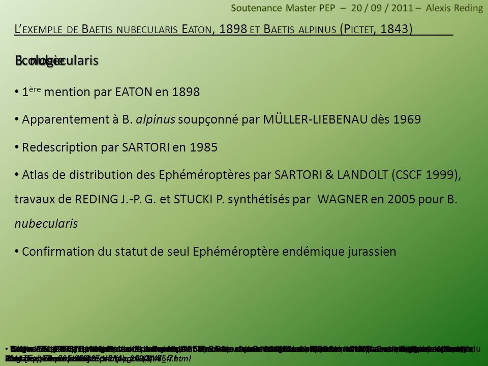 Extraction de lADN avec le « Dneasy Blood & Tissue Kit » (QIAGEN, Germany) Amplification de régions mitochondriales informatives par PCR: 16S et COI Amorces: V OLET BIOGÉOGRAPHIQUE – M ATÉRIEL & M ÉTHODES : PHASE DE SÉQUENÇAGE COI C1-J-1751F5 -GGATCACCTGATATAGCATTCCC-3 Simon et al, 1994 C1-N-2191R5 -CCAGGTAAAATTAAAATATAAACTTC-3 LCO1490F5 -GGTCAACAAATCATAAAGATATTGG-3 Folmer et al, 1994 HCO2198R5 -TAAACTTCAGGGTGACCAAAAAATCA-3 16S LR-J-12864F5 -CTCCGGTTTGAACTCAGATCA-3 Arnedo et al, 2001 LR-N-13398R5 -CGCCTGTTTATCAAAAACAT-3 Séquençage au CIG à Lausanne