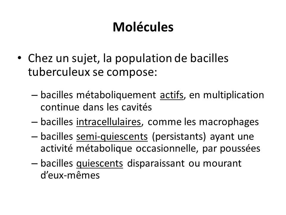 Molécules Chez un sujet, la population de bacilles tuberculeux se compose: – bacilles métaboliquement actifs, en multiplication continue dans les cavi