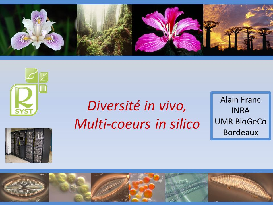 Diversité in vivo, Multi-coeurs in silico Alain Franc INRA UMR BioGeCo Bordeaux