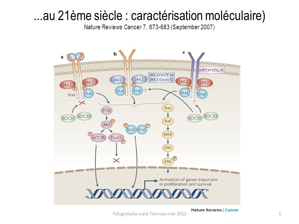 1.Acute myeloid leukemia (AML) and related precursor neoplasmas 2.