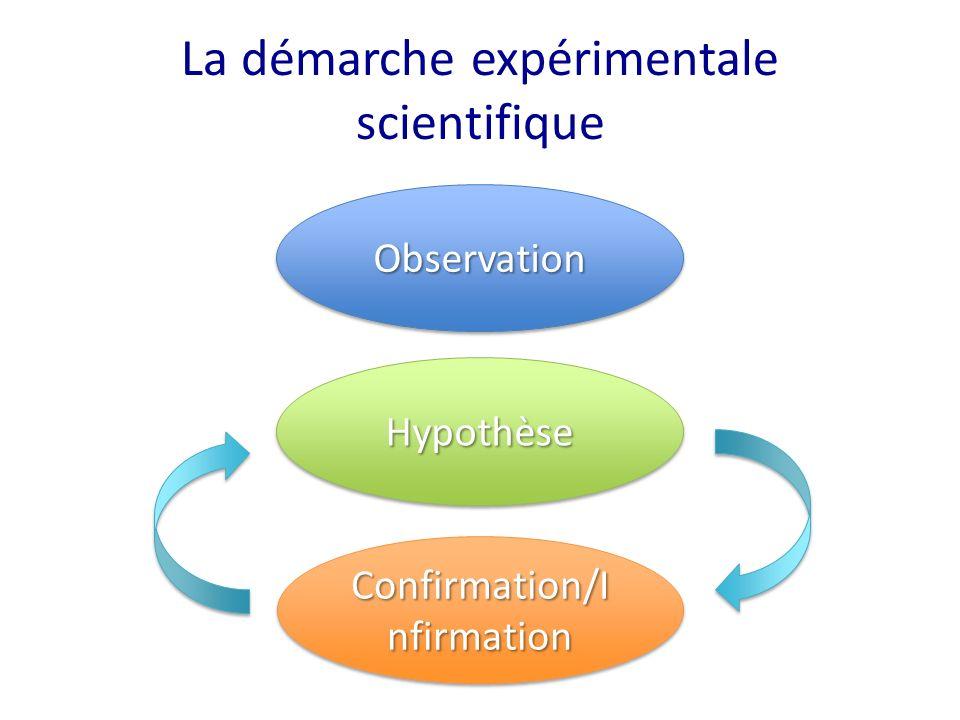 La démarche expérimentale scientifique ObservationObservation HypothèseHypothèse Confirmation/I nfirmation