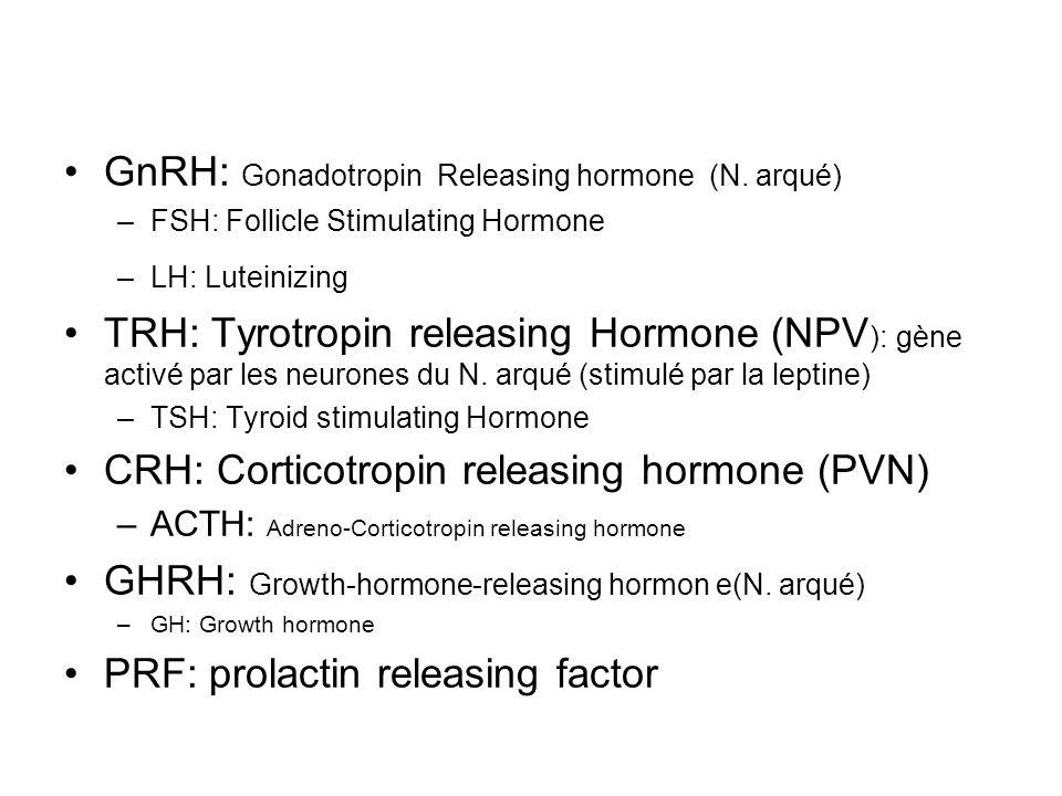 GnRH: Gonadotropin Releasing hormone (N. arqué) –FSH: Follicle Stimulating Hormone –LH: Luteinizing TRH: Tyrotropin releasing Hormone (NPV ): gène act