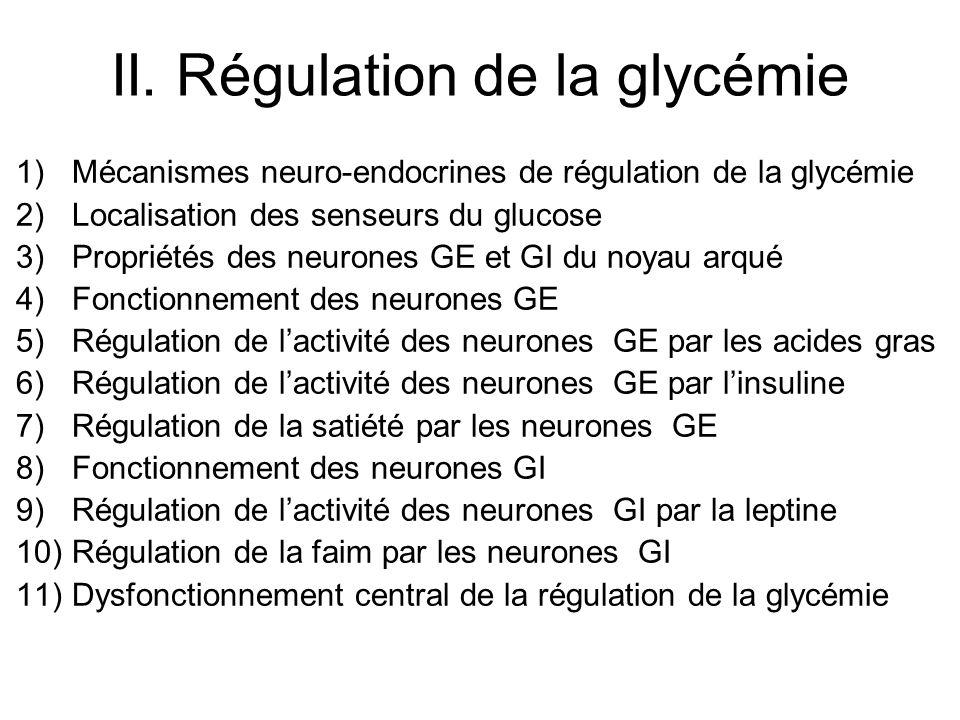 II. Régulation de la glycémie 1)Mécanismes neuro-endocrines de régulation de la glycémie 2)Localisation des senseurs du glucose 3)Propriétés des neuro