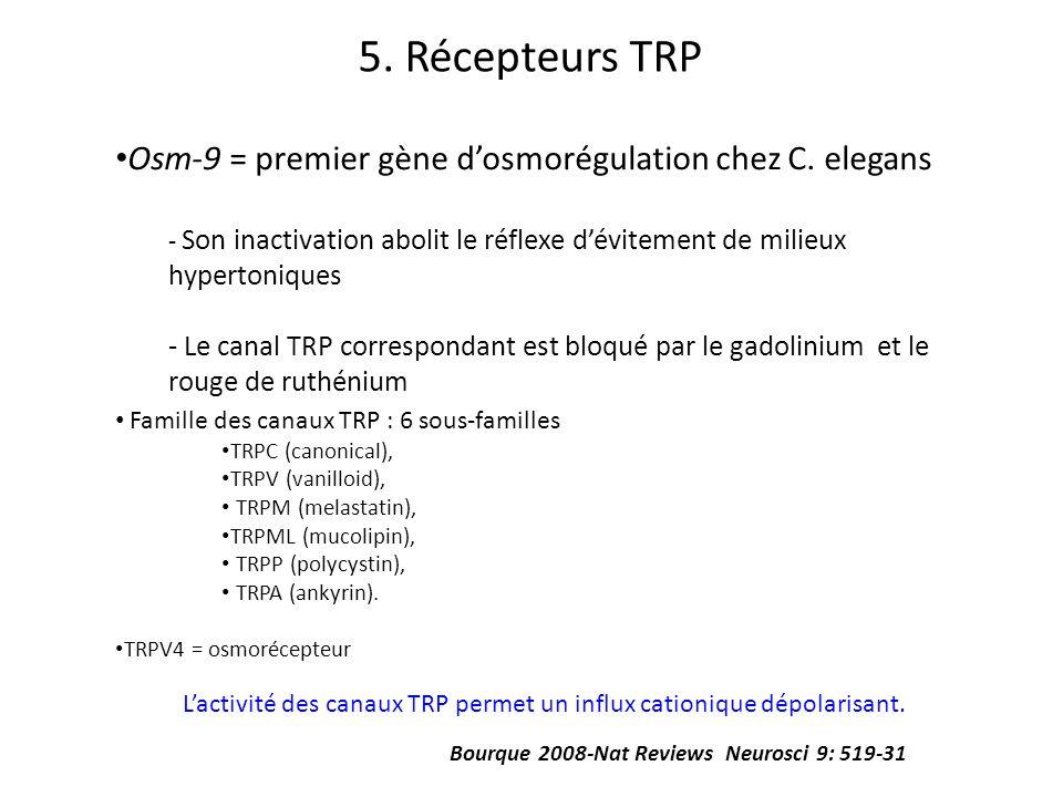 5. Récepteurs TRP Osm-9 = premier gène dosmorégulation chez C. elegans - Son inactivation abolit le réflexe dévitement de milieux hypertoniques - Le c