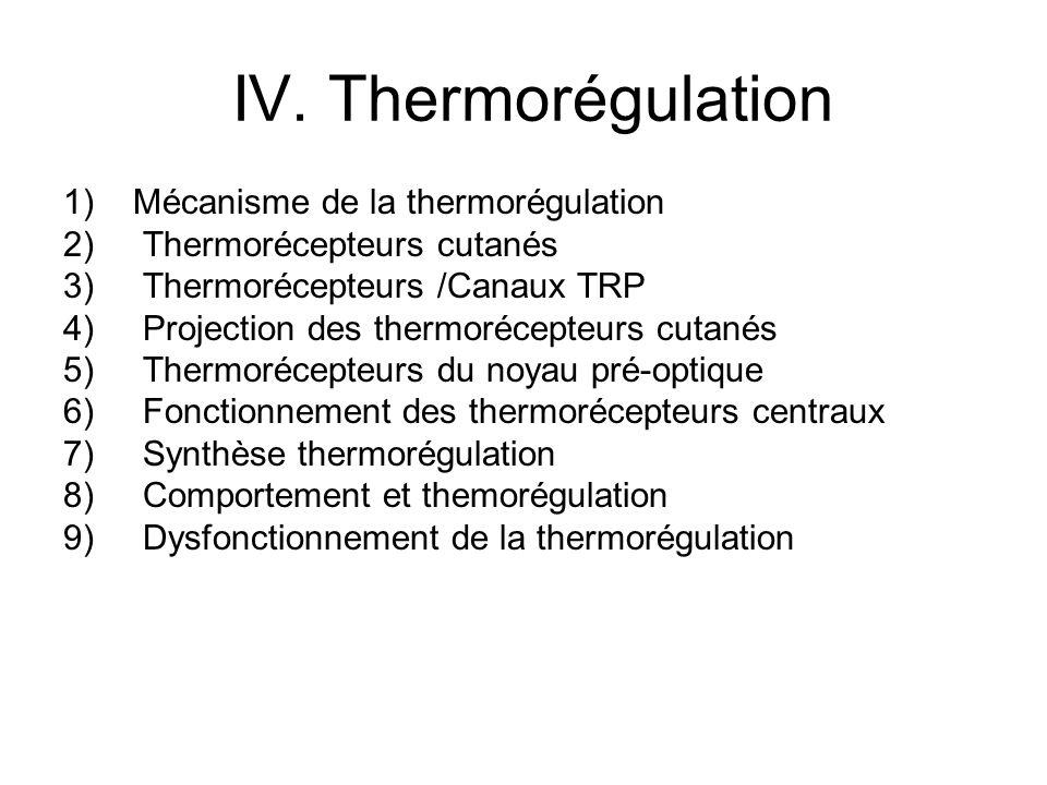 IV. Thermorégulation 1)Mécanisme de la thermorégulation 2) Thermorécepteurs cutanés 3) Thermorécepteurs /Canaux TRP 4) Projection des thermorécepteurs