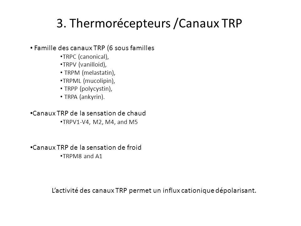 3. Thermorécepteurs /Canaux TRP Famille des canaux TRP (6 sous familles TRPC (canonical), TRPV (vanilloid), TRPM (melastatin), TRPML (mucolipin), TRPP