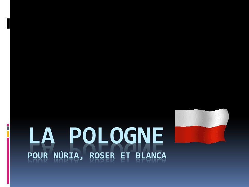 La Pologne en Europe.La Pologne est située en Europe centrale.