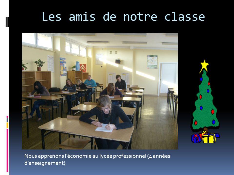 Les amis de notre classe Nous apprenons léconomie au lycée professionnel (4 années denseignement).