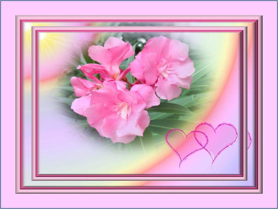 Et tout le jour dans le secret, Jen ai cueilli des bouquets pour toi… Monique Hion